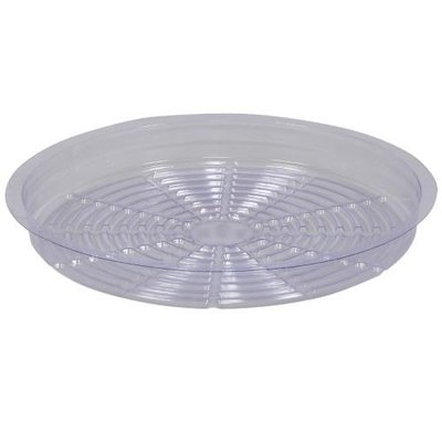 Indoor Gardening Saucer-Clear-8""