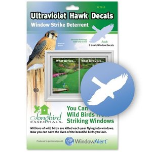 Yard and Garden Art Window Alert Hawk Decal