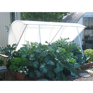 "Outdoor Gardening Solexx 8'x6'x31"" Deluxe Cold Frame - 5mm (G-80SP)"