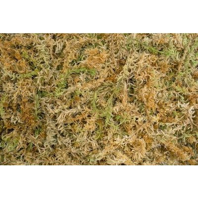 Home and Garden Besgrow Spagmoss Sphagnum Moss - 150 gram