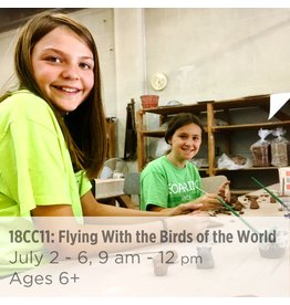 NCC Flying With the Birds of the World