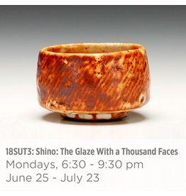 NCC WAITLIST: Shino: The Glaze With a Thousand Faces