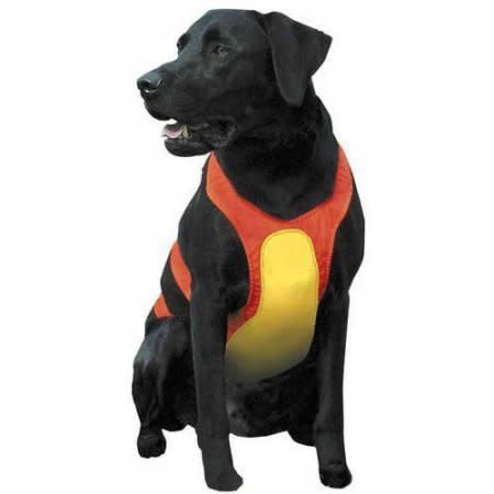 Remington - Dog Chest Protector