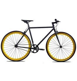 Golden Cycle 52cm Black/Gold