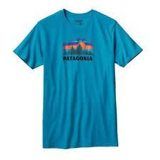 Patagonia Patagonia M's Woven Fitz Roy Cotton/Poly T-Shirt,
