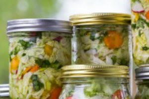 Why You and Your Pet Need Fermented Foods