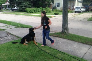 Teaching Your Dog Invisible Boundaries