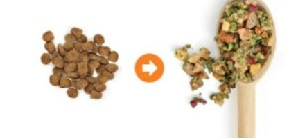 Sojos -Raw Pet Food Made Easy