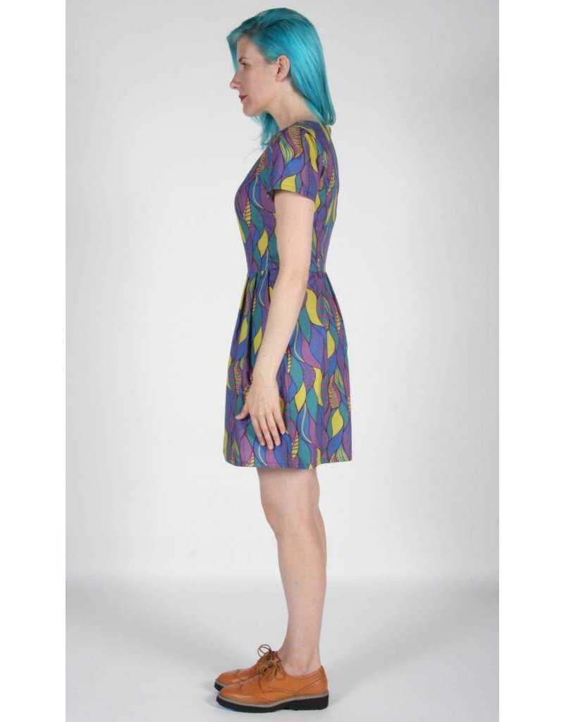 Birds of North America Dress Bobolink Fit Flare