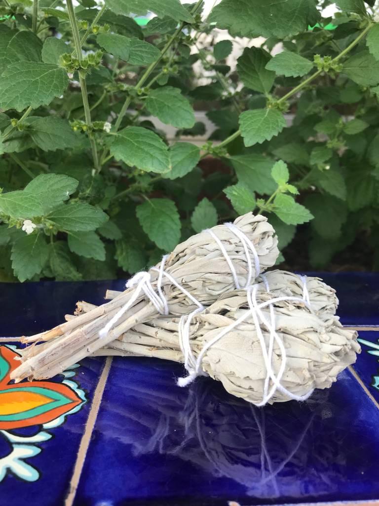 Native Scents White Sage Mini smudges
