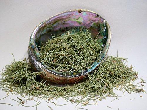 Cedar (incense cedar) leaf 2 oz.