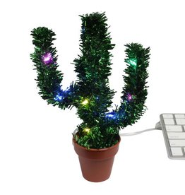 Merry Christmas Cactus