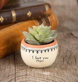 Succulent I Love Mom