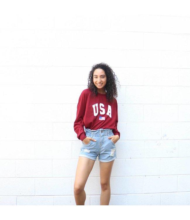 Burgundy USA SweatShirt