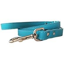 "Auburn Leather Turquoise 3/4""x72"""