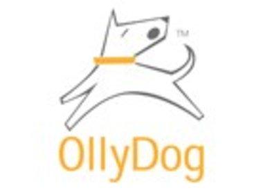 Olly Dog