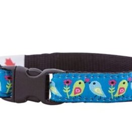 RC Pet Products Kitty Breakaway Collar