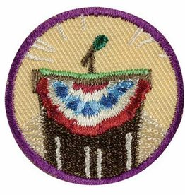GIRL SCOUTS OF THE USA Junior Inside Government Badge