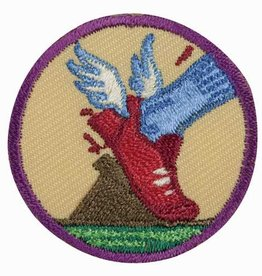 GIRL SCOUTS OF THE USA Junior Practice with Purpose Badge