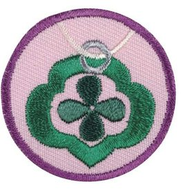 GIRL SCOUTS OF THE USA Junior Jeweler Badge