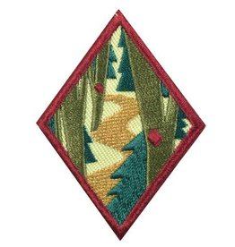 GIRL SCOUTS OF THE USA Cadette Trailblazing Badge