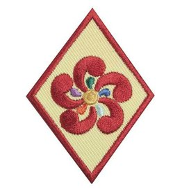 GIRL SCOUTS OF THE USA Cadette Entrepreneur Badge