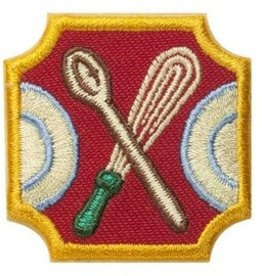 GIRL SCOUTS OF THE USA Ambassador Dinner Party Badge