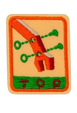 GIRL SCOUTS OF THE USA Senior Designing Robots Badge
