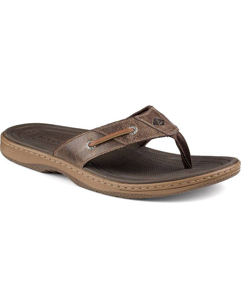 Sperry Top Sider Men's Baitfish Thong - SP18