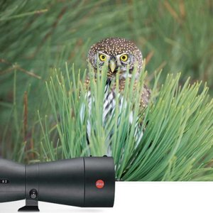 leica televid kit offers