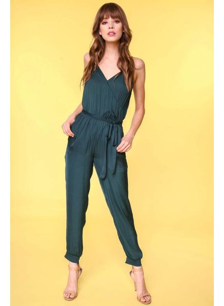 Naked Zebra Kallie Jumpsuit