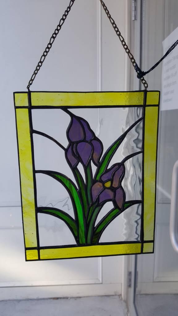 Iris Panel