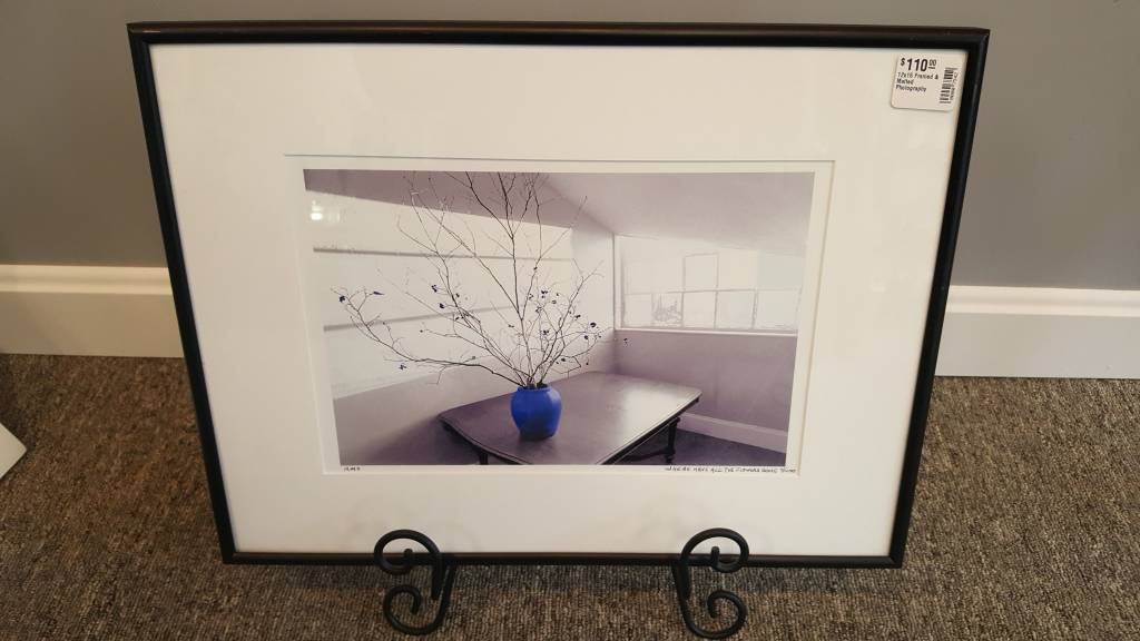 12x16 Framed & Matted Photography