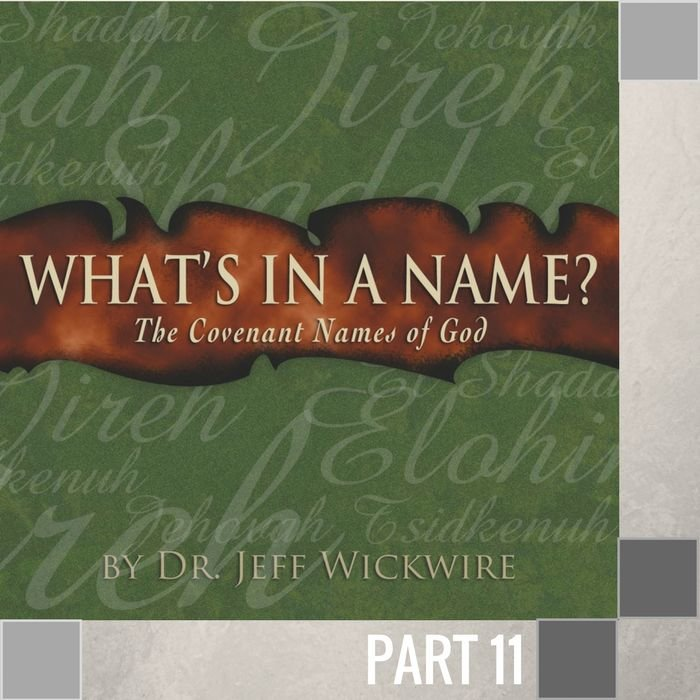 11(I020) - Jehovah-Rohi