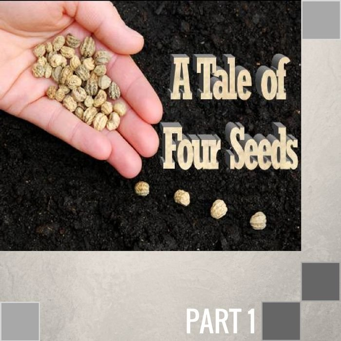 01(L021) - The Seed Sown By The Roadside