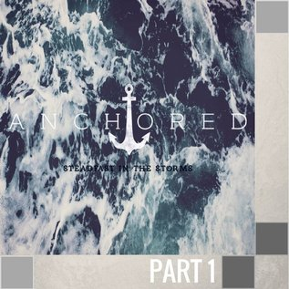 01(T033) - The Purpose In Your Storm
