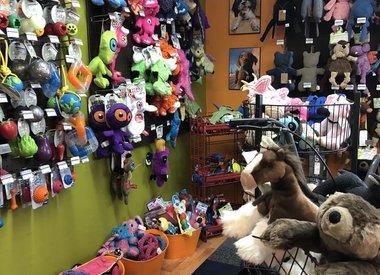 Dog - Toys
