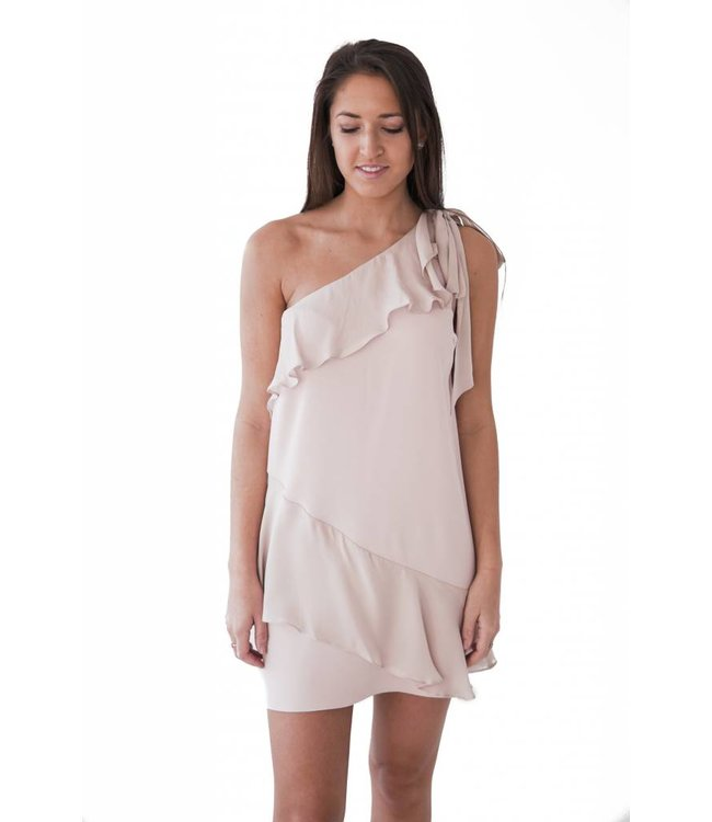 PARKER EDEN COMBO DRESS - 1MC - BLUSH