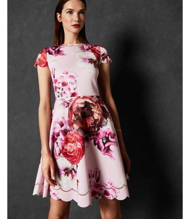 TED BAKER SEEANA DRESS - 619 - LT PINK