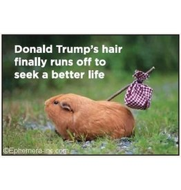 Donald Trump's Hair Finally Runs Off Magnet