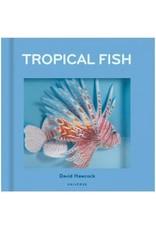 Tropical Fish Pop-Up