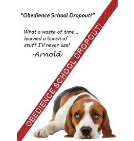 """Obedience School Dropout"" Leash"
