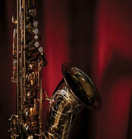 TM Custom Tenor Saxophone in Gold