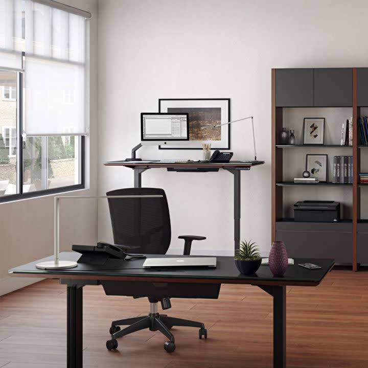 BDI Sequel Lift Standing Desk 6052