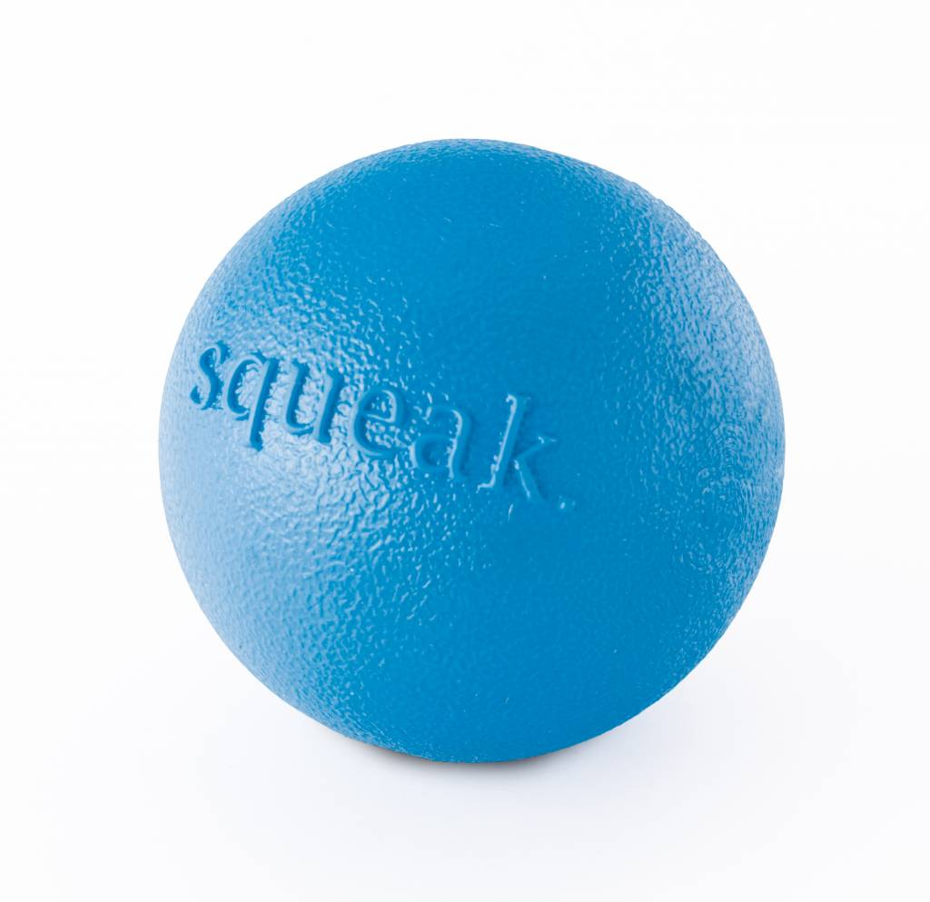 Planet Dog Planet Dog Squeak Blue