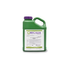 Regalia Original 2.5 Gallon