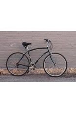 Raleigh 2001 Diamondback Parkway - 21 inch/Large (used)