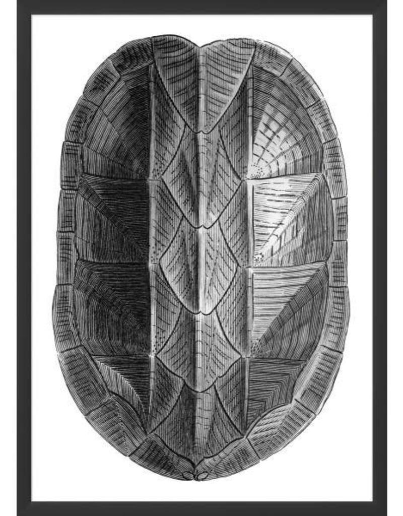 wendover art wendover art turtle shell metallic 1 miller and