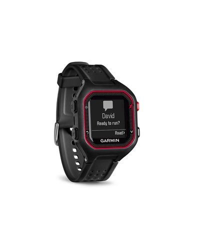 Garmin Garmin Forerunner 25 Watch Blk/Red LG