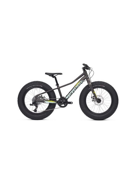 Specialized 2016 Specialized Fatboy 20 Char/Teal/Hyp Grn